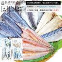 【訳あり】【規格外】 魚種おまかせ干物(ひもの)セット 4種12品(アジ サバ サンマ等) 同一配送...