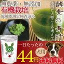Aojiru1_botan3