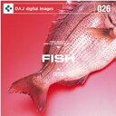 【訳あり】DAJ 026 FISH CD-ROM素材集 メール便可 あす楽 ロイヤリティ フリー cd-rom画像 cd-rom写真 写真 写真素材 素材