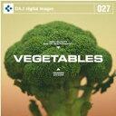 【訳あり】DAJ 027 VEGITABLES CD-ROM素材集 メール便可 あす楽 ロイヤリティ フリー cd-rom画像 cd-rom写真 写真 写真素材 素材