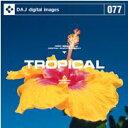 【訳あり】DAJ 077 TROPICAL CD-ROM素材集 メール便可 あす楽 ロイヤリティ フリー cd-rom画像 cd-rom写真 写真 写真素材 素材