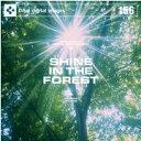 【訳あり】DAJ 156 SHINE IN THE FOREST CD-ROM素材集 送料無料 あす楽 ロイヤリティ フリー cd-rom画像 cd-rom写真 写真 写真素材 素材