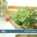 最大P33.5倍【訳あり】DAJ elm004 Fresh Herb CD-ROM素材集 送料無料 あす楽 ロイヤリティ フリー cd-rom画像 cd-rom写真 写真 写真素材 素材