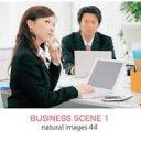 【あす楽】naturalimages Vol.44 BUSINESS SCENE 1 CD-ROM素材集 送料無料 ロイヤリティ フリー cd-rom画像 cd-rom写真 写真 写真素材 素材