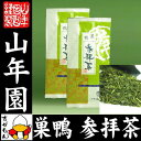 日本茶 お茶 茶葉 巣鴨参拝茶100g×12袋セット 深蒸し掛川茶 葉酸 緑茶 豊島の名品50選 国