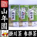 日本茶 お茶 茶葉 参拝茶100g×1袋+掛川深蒸し茶100g×2袋セット 送料無料 国産 煎茶 茶