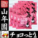 【沖縄県産黒糖使用】チョコっとう 800g(40g×20袋セット) 送料無料 チョコ チョコレート コ
