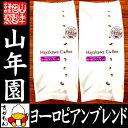 【北海道焙煎】レギュラーコーヒー ヨーロピアンブレンド 挽き豆 大容量 500g×2袋セット 送