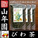 【国産 100%】びわ茶 びわの葉茶 100g×3袋セット 無農薬 ノンカフェイン 送料無料 宮崎県産