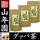 【国産 100%】グァバ茶 3g×16パック×3袋セット テ...