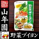 【国産野菜使用】野菜ブイヨン 4g×30パック 粉末タイプ 6種類の国産野菜を使用 送料無料 パ