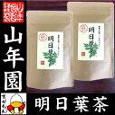 【国産 無農薬 100%】明日葉茶 40g×2袋セット 伊豆...
