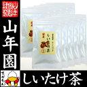 【国産100%】しいたけ茶 ティーパック 無農薬 3g×10パック×10袋セット 静岡県産 送料