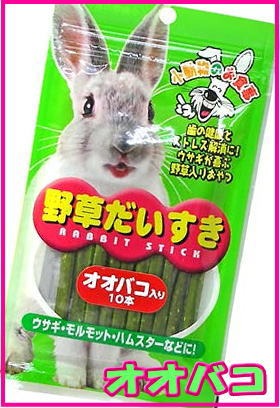 [クハラ]野草だいすき(オオバコ) 10本入りの商品画像