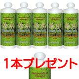 桧水1000ml5+1コ【ひのきすい 桧 檜水 ヒノキチオール】