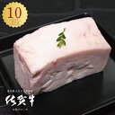 送料無料 牛肉 牛脂 和牛 A5 「 佐賀牛 五つ星ビーフ 牛脂ブロック 200グラム/10パック 計