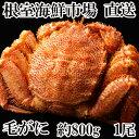 【ふるさと納税】毛がに約800g×1尾 B-11020