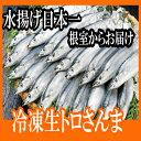【ふるさと納税】 [北海道根室産]さんま60尾 D-70002