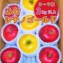 【ふるさと納税】[先行予約]【令和3年度産】大東りんご(ふじ、シナノゴールド)セット