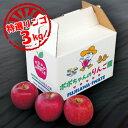 【ふるさと納税】【先行予約 9~12月発送】いちのせきの旬リンゴ 3kg