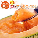 【ふるさと納税】JA直送 赤いアンデスメロン 4〜5玉8kg以上 赤肉 アンデス