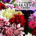 ≪お花の定期便≫ 酒田の花束「季節の花束SAKATA12」 年12回 お申込み翌月から毎月お届け