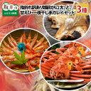 【ふるさと納税】三国港大漁3点セット 【指折れ越前がに(大)...
