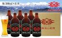 【ふるさと納税】飛騨高山麦酒 ペールエール6本セット b662
