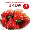 【ふるさと納税】a10-421 いちご「きらぴ香」4パック