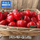 【ふるさと納税】甘さ抜群!!トマト嫌いも食べられるトマトベリ...