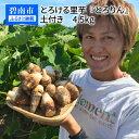 【ふるさと納税】とろける里芋『とろりん』 土付き4.5kg ...