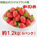 【ふるさと納税】農家直送 完熟まりひめ(和歌山県オリジナルブランド苺)約1.2kg(4パック)