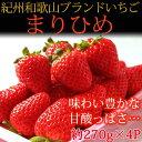 【ふるさと納税】紀州和歌山ブランドいちご「まりひめ」約270...
