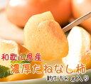 【ふるさと納税】【和歌山特産品】 濃厚たねなし柿 約7.5k...