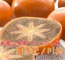 【ふるさと納税】【和歌山特産品】 和歌山柿の最高峰 濃厚!紀...