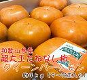 【ふるさと納税】【和歌山特産品】 柿の女王 特大サイズのたね...