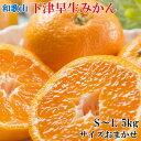 【ふるさと納税】■和歌山下津の早生みかん5kg(S〜Lサイズ...