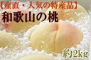 【ふるさと納税】【産直・人気の特産品】和歌山の桃 約2kg・...