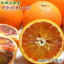 【ふるさと納税】【希少・高級柑橘】国産濃厚ブラッドオレンジ「タロッコ種」3kg