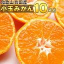 【ふるさと納税】■和歌山有田産小玉みかん約10kg (Sサイ...