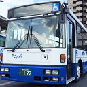 【ふるさと納税】瀬戸内ふるさとパス(1ヶ月) 【チケット・バス乗車券】