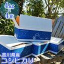 【ふるさと納税】令和2年コシヒカリ新米!(精米16kg)4k...