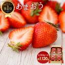【ふるさと納税】<予約>あまおう 約280g×4パック(2020年1月〜4月順次発送)合計約1,120g 福岡県産 九州 イチゴ いちご 苺 果物 くだ..