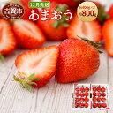 【ふるさと納税】<予約>あまおう 約400g×2パック(20...