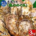 【ふるさと納税】糸島カキ 生牡蠣 3kg 福岡県糸島市岐志漁...