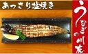 【ふるさと納税】うなぎの川友 白焼き2尾セット(AK002)