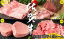 N100-10【ふるさと納税】贅沢な佐賀牛 プレミアム定期便...