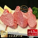【ふるさと納税】BBU007 【全10回定期便】ヒレステーキ...