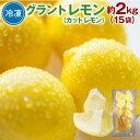 【ふるさと納税】グラント レモン 冷凍 約2kg 15袋 小分け カットレモン 柑橘 果物 フルーツ...