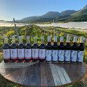 【ふるさと納税】久住ワイナリー ワイン屋さんの葡萄ジュース6本 ワイン屋さんのブルーベリージュース6...